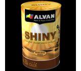"""Ջրային հիմքով լաք """"ALVAN SHINY"""""""